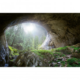 Fototapety Cave In The Forest DD118919 A.S. Création Designwalls